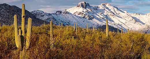 Arizona Mountains in Snow - Rob Travis